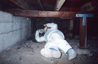 home inspector in crawl space